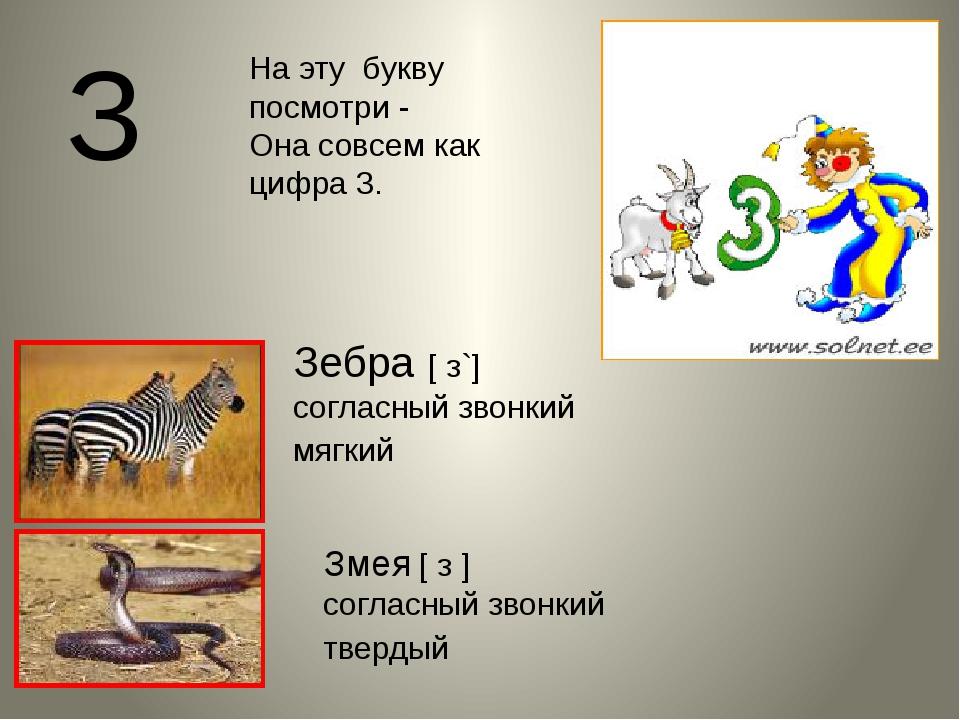 З Змея [ з ] согласный звонкий твердый Зебра [ з`] согласный звонкий мягкий Н...