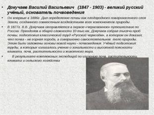 Докучаев Василий Васильевич (1847 - 1903) - великий русский учёный, основател