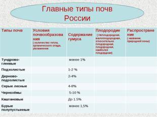 Главные типы почв России Типы почвУсловия почвообразования ( количество тепл