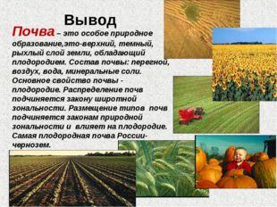 Вывод Почва – это особое природное образование,это-верхний, темный, рыхлый с