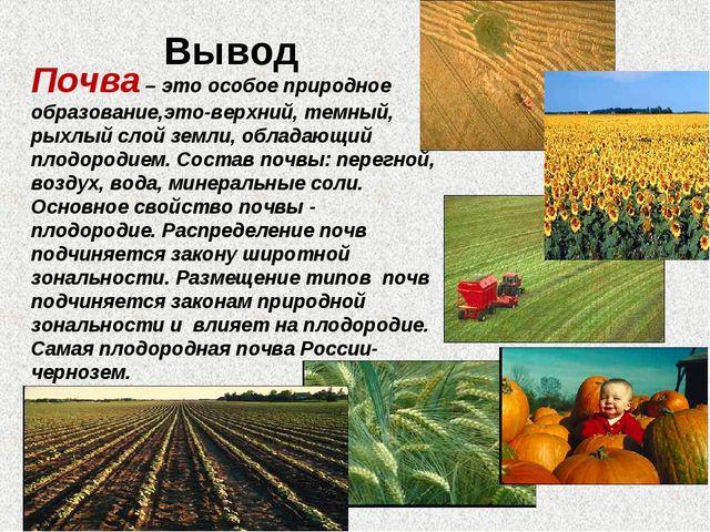 Вывод Почва – это особое природное образование,это-верхний, темный, рыхлый с...