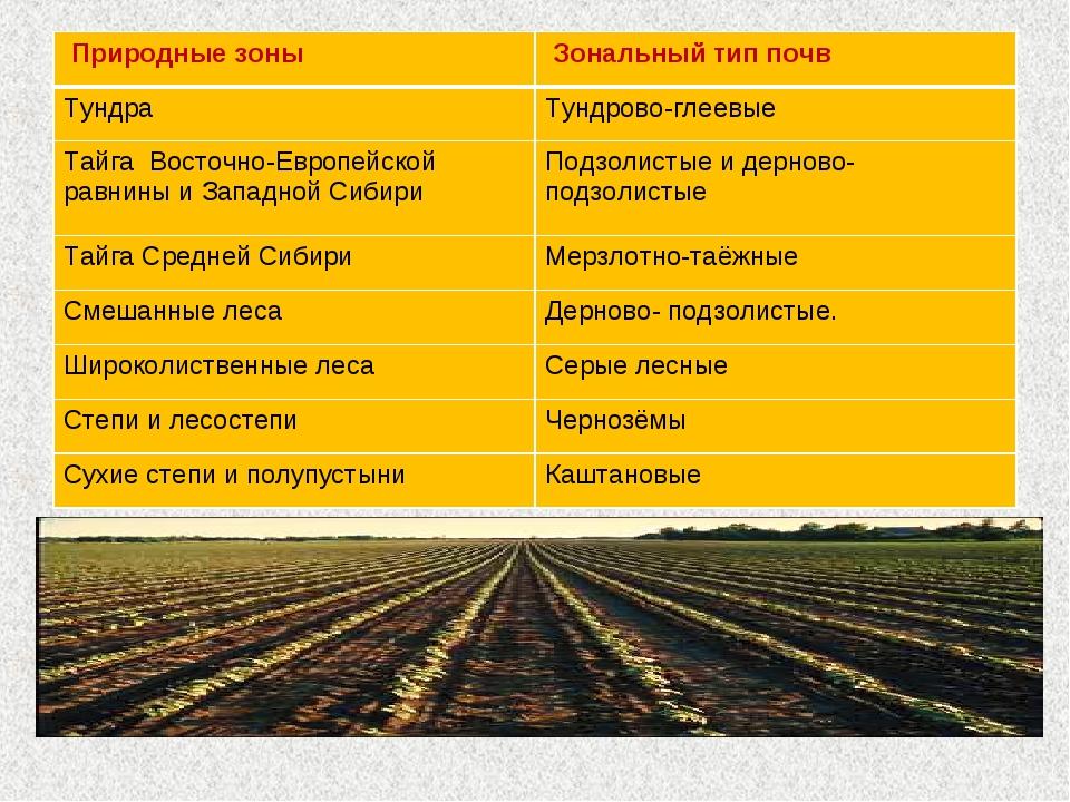 Природные зоны Зональный тип почв ТундраТундрово-глеевые Тайга Восточно-Ев...