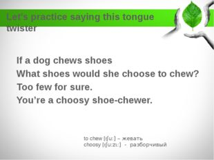 Let's practice saying this tongue twister If a dog chews shoes What shoes wou