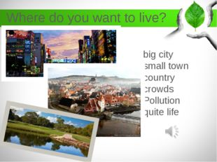 Where do you want to live? big city small town country crowds Pollution quite