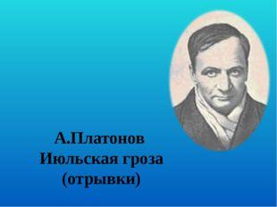 А.Платонов  Июльская гроза (отрывки)