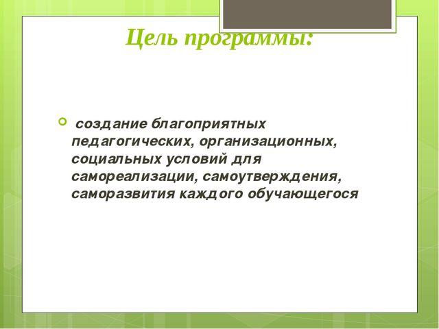 Цель программы: создание благоприятных педагогических, организационных, соци...