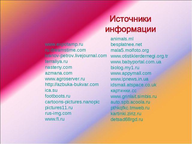 animals.ml besplatnee.net mala5.moifoto.org www.otistiklerdernegi.org.tr www...