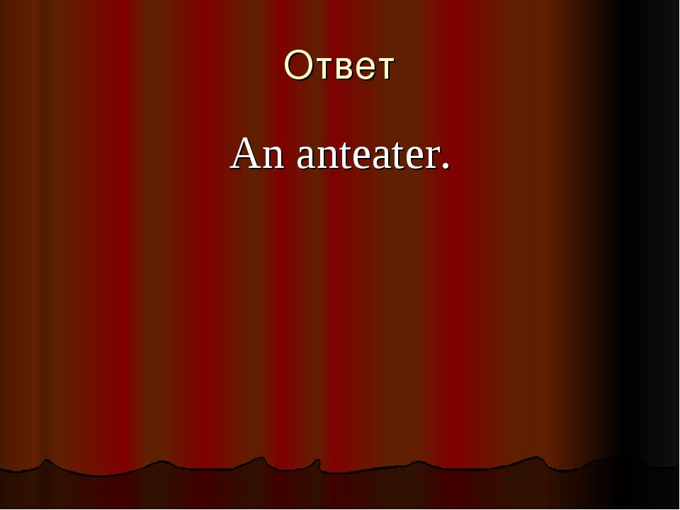 An anteater. Ответ