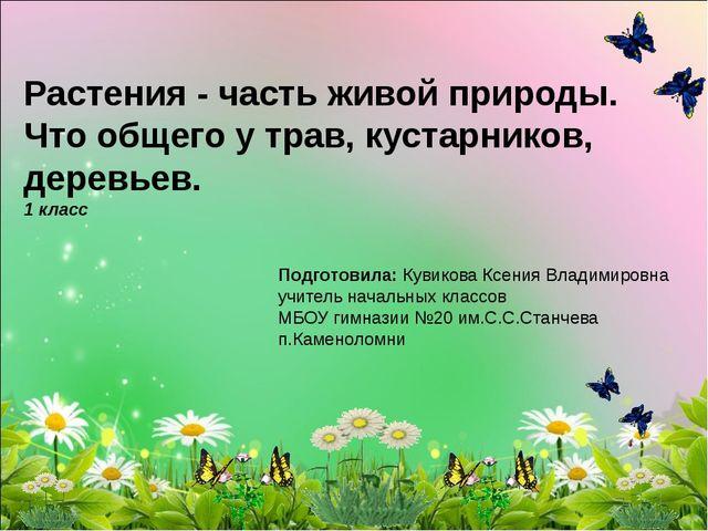 Растения - часть живой природы. Что общего у трав, кустарников, деревьев. 1...