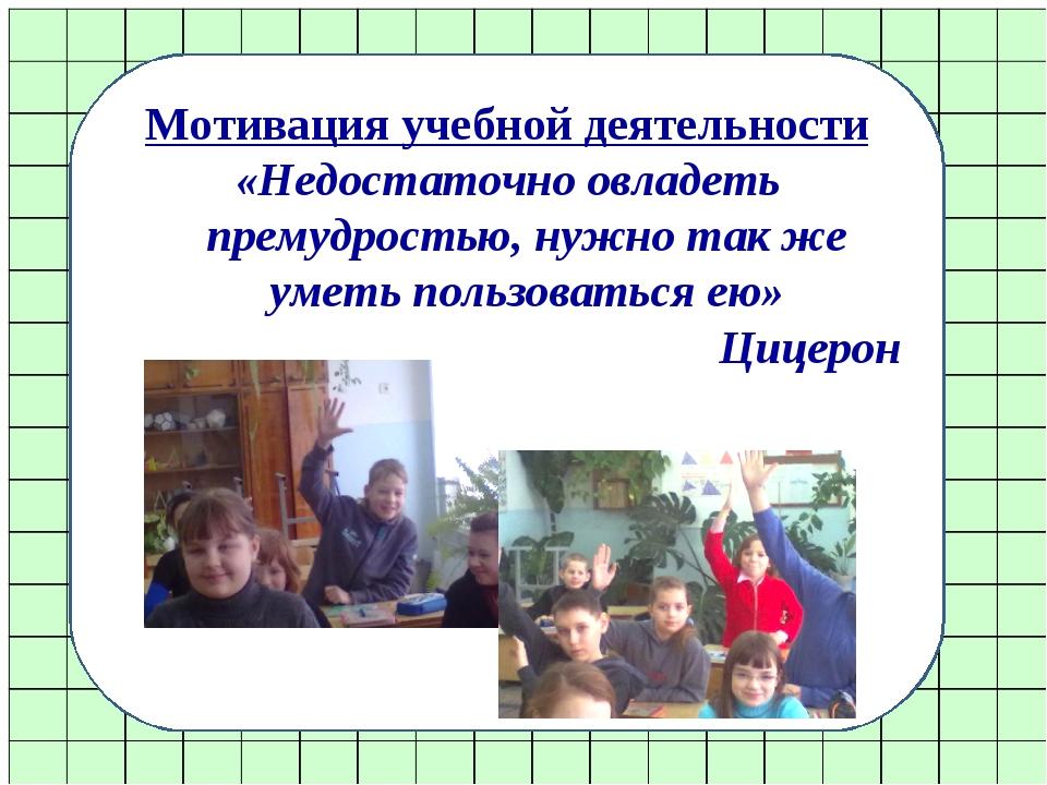 Мотивация учебной деятельности «Недостаточно овладеть премудростью, нужно так...