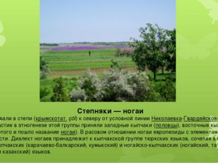 Степняки— ногаи Ногаи проживали в степи (крымскотат.çöl) к северу от условн