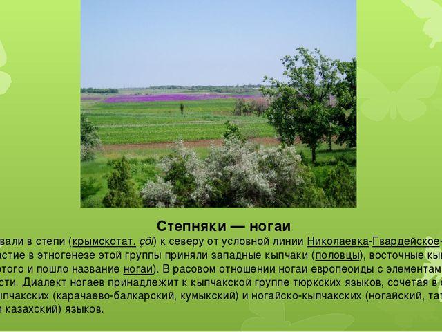 Степняки— ногаи Ногаи проживали в степи (крымскотат.çöl) к северу от условн...
