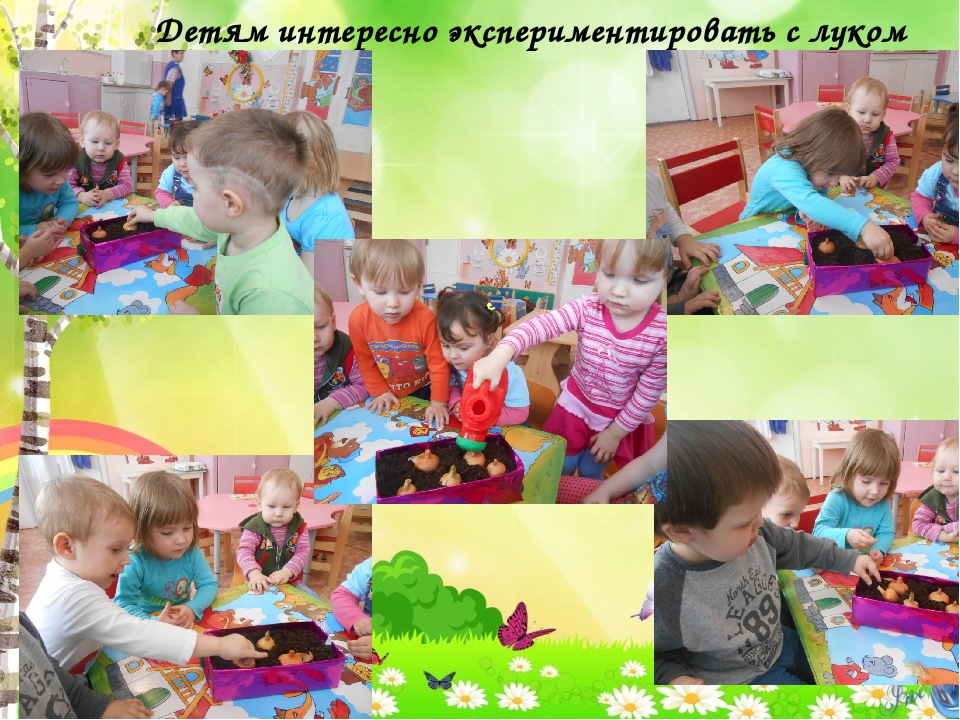 Детям интересно экспериментировать с луком
