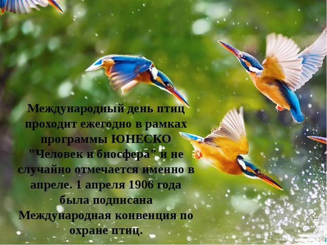 """Международный день птиц проходит ежегодно в рамках программы ЮНЕСКО """"Человек..."""