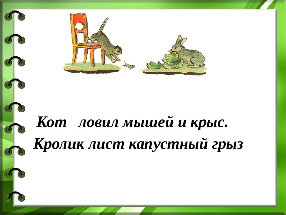 Кот ловил мышей и крыс. Кролик лист капустный грыз
