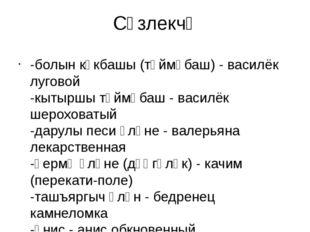 Сүзлекчә -болын күкбашы (төймәбаш) - василёк луговой -кытыршы төймәбаш - васи