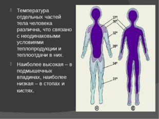 Температура отдельных частей тела человека различна, что связано с неодинаков