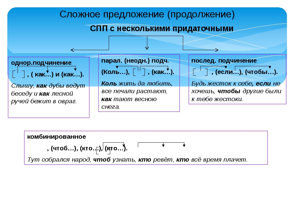 Сложное предложение (продолжение) СПП с несколькими придаточными однор.подчин...