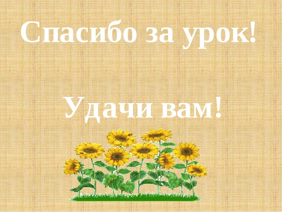 Спасибо за урок! Удачи вам!