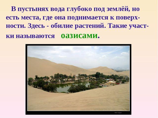 В пустынях вода глубоко под землёй, но есть места, где она поднимается к пов...