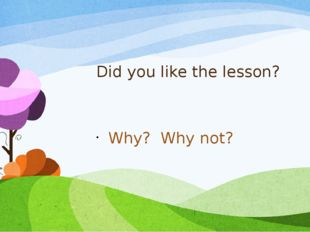 Did you like the lesson? Why? Why not?
