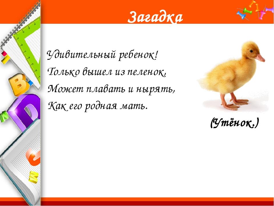 Ш ш ши Шу шахматы Шура Саша и Маша играют в шахматы. ProPowerPoint.Ru