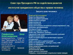 Совет при Президенте РФ по содействию развития институтовгражданскогообщест