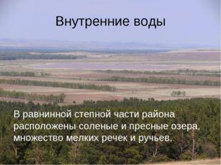 Внутренние воды В равнинной степной части района расположены соленые и пресны