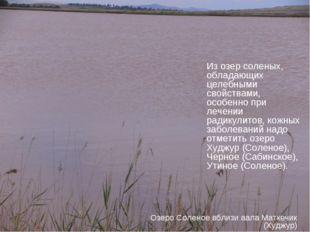 Из озер соленых, обладающих целебными свойствами, особенно при лечении радику