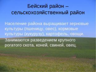 Бейский район – сельскохозяйственный район Население района выращивает зернов