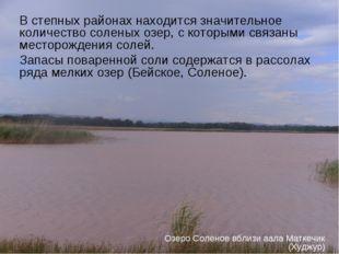 В степных районах находится значительное количество соленых озер, с которыми