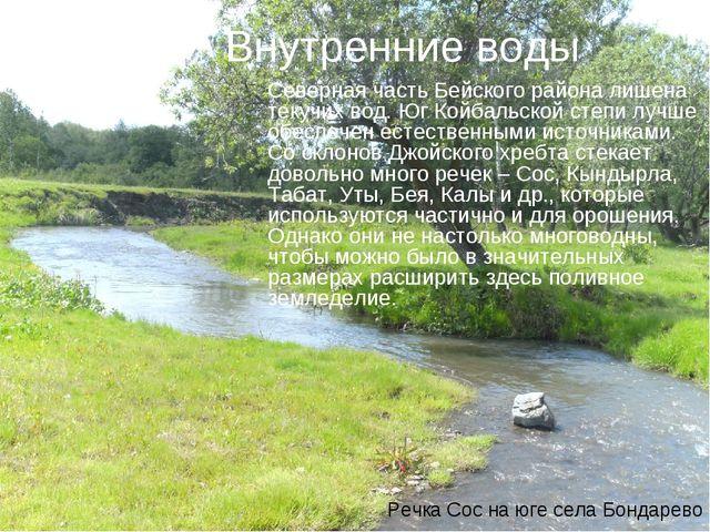 Внутренние воды Северная часть Бейского района лишена текучих вод. Юг Койбаль...