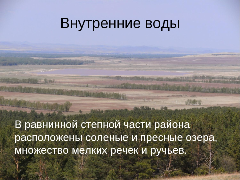 Внутренние воды В равнинной степной части района расположены соленые и пресны...