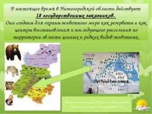 В настоящее время в Нижегородской области действуют 18 государственных заказ