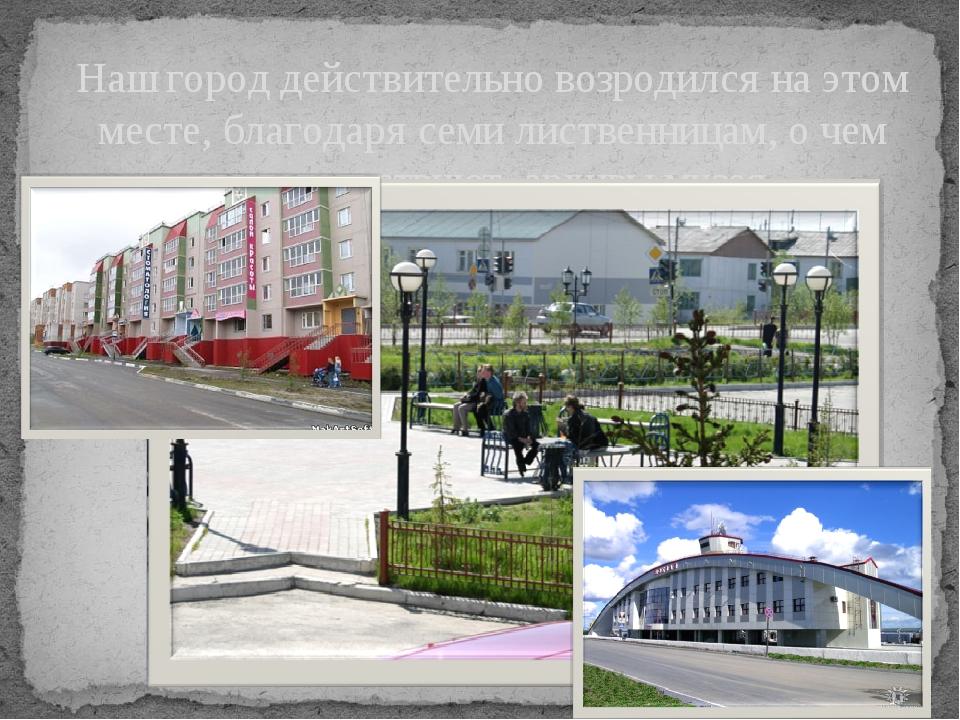 Наш город действительно возродился на этом месте, благодаря семи лиственницам...