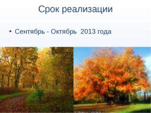 Срок реализации Сентябрь - Октябрь 2013 года