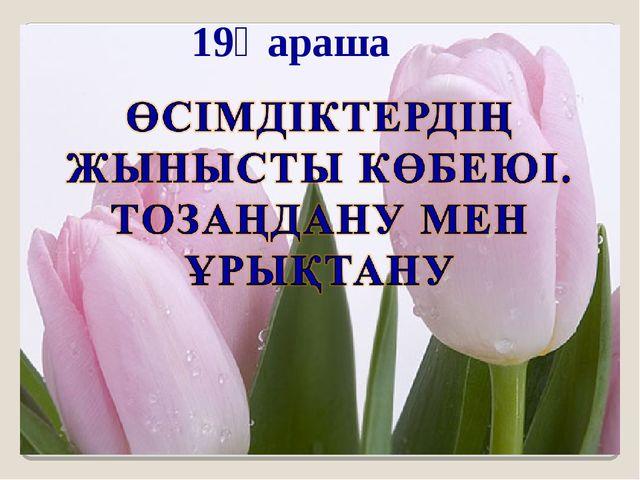 19Қараша