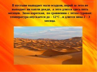 В пустыне выпадает мало осадков, порой за лето не выпадает ни капли дождя, а