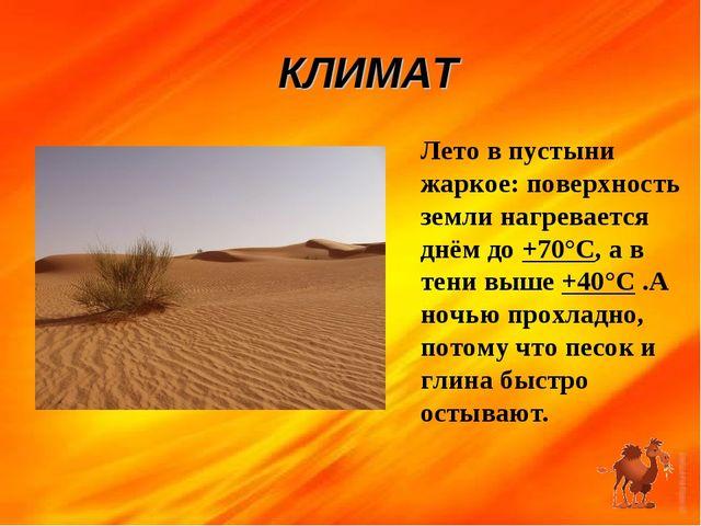 КЛИМАТ Лето в пустыни жаркое: поверхность земли нагревается днём до +70°С, а...