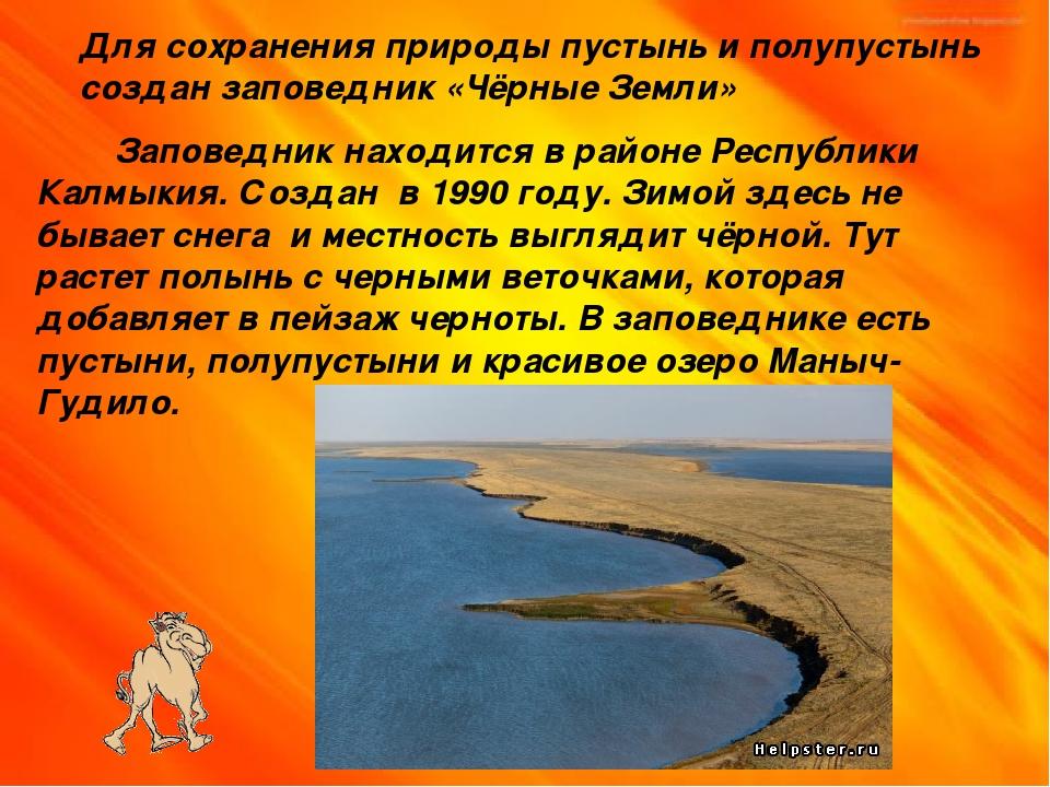 Для сохранения природы пустынь и полупустынь создан заповедник «Чёрные Земли»...