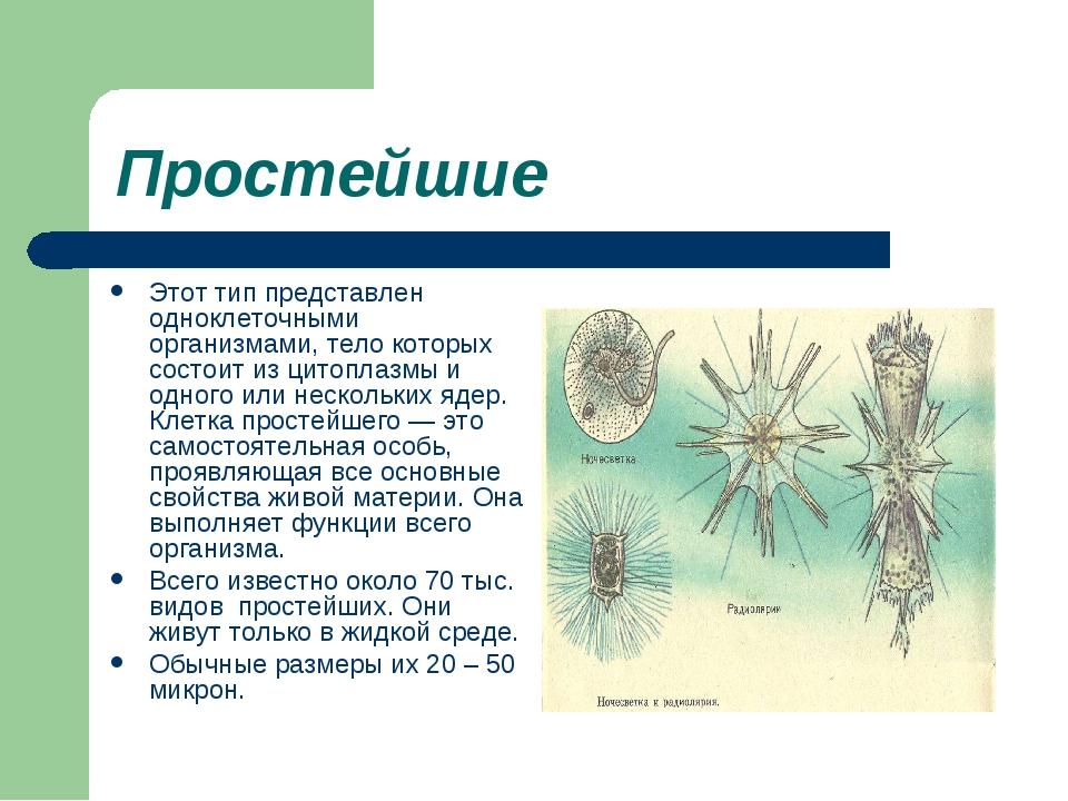 Простейшие Этот тип представлен одноклеточными организмами, тело которых сост...