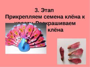 3. Этап Прикрепляем семена клёна к хвосту. Раскрашиваем семена клёна