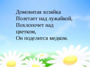 Домовитая хозяйка Полетает над лужайкой, Похлопочет над цветком, Он поделитс