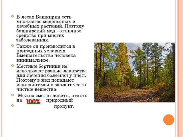 В лесах Башкирии есть множество медоносных и лечебных растений. Поэтому башки...