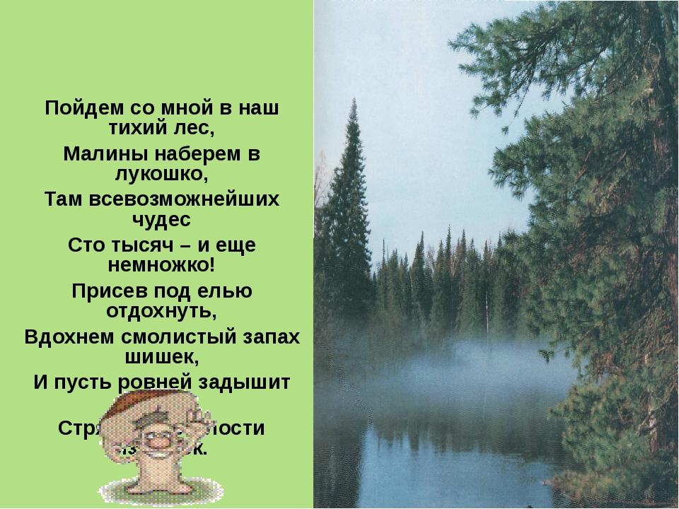 Пойдем со мной в наш тихий лес, Малины наберем в лукошко, Там всевозможнейших...