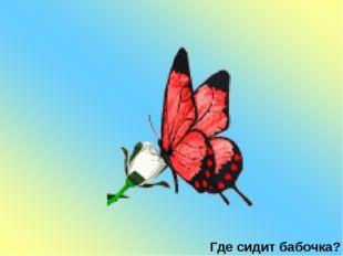 Где сидит бабочка?