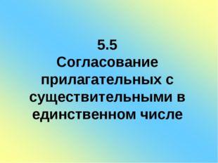 5.5 Согласование прилагательных с существительными в единственном числе