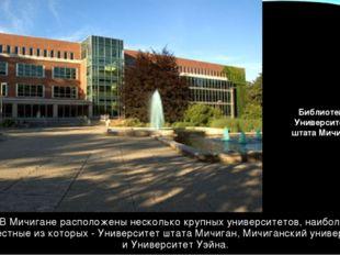 В Мичигане расположены несколько крупных университетов, наиболее известные из