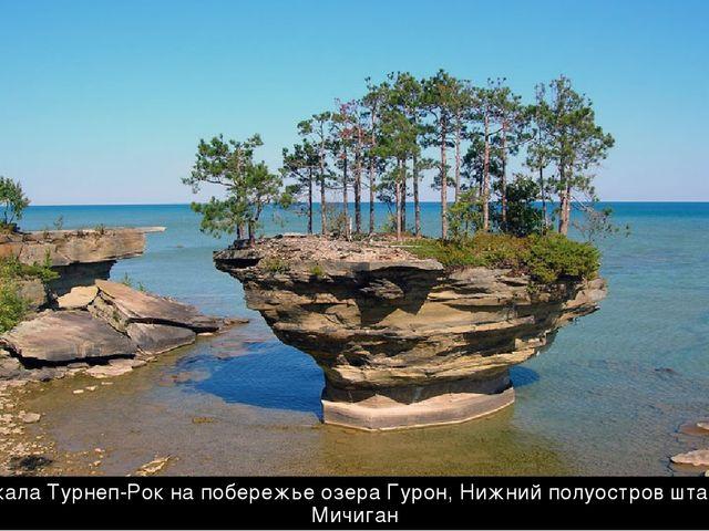 Скала Турнеп-Рок на побережье озера Гурон, Нижний полуостров штата Мичиган