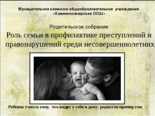 Муниципальное казенное общеобразовательное учреждение «Каменносанарская ООШ»